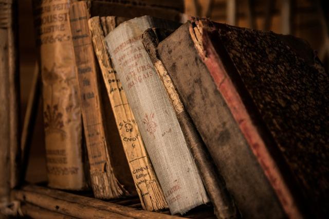 alfarrabista, livros, books, português, portugal, faro, algarve, barlavento, antigo,